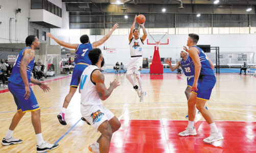 Pro basketball plays at Alliant campus